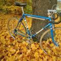 Modrý Favouš s doplňky od Vás :)
